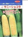 トウモロコシ種 サニーショコラ  みかど協和のトウモロコシ品種です。 種のことな
