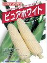 トウモロコシ ピュアホワイト 雪印種苗 グリーン