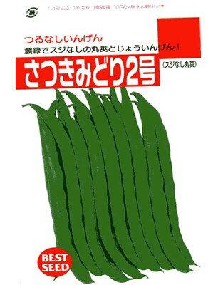 インゲン種 さつきみどり2号 タキイ種苗のつるな...の商品画像