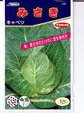 坂田指出大白菜大白菜品种交配型岬不寻常的蔬菜[キャベツ サカタ交配・・・みさき・・・<サカタのキャベツです。 種のことならお任せグリーンデポ>]