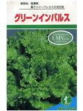 レタス みかど・・・グリーンインパルス・・・<みかどのリーフレタスです。 種のことならお任せグリーンデポ>