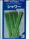アスパラガス種 タキイ交配 シャワー  タキイ種苗のアスパラ品種です。 種のことならお任せグリーンデポ