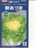 白菜種 タキイ交配???新あづま???<タキイの白菜です。 種のことならお任せグリーンデポ>