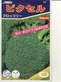 ブロッコリー種 サカタ交配・・・ピクセル・・・<サカタのブロッコリです。種のことならお任せグリーンデポ>