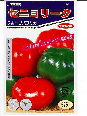 フルーツパプリカ セニョリータレッド(種)