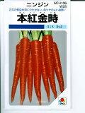 ニンジン種子 本紅金時にんじん <タキイ種苗の伝統野菜人参種です。>