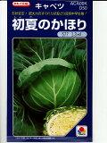 夏[タキイ交配 初夏のかほり <タキイのキャベツ種子です。種のことならグリーンデポ>]