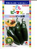 新感覚の次世代野菜品種! 新しいピーマン!こどもピーマン タキイ交配ピー太郎   タキイ種苗のこどもピーマンの種です。