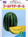 小玉スイカの種 ゴールドマダーボール みかど協和の小玉西瓜品...