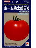 首页桃太郎番茄杂交种子泷井泷井种子的EX。像这种在绿得宝[タキイ交配 ホーム桃太郎EX  タキイ種苗のトマト種子です。種の通販ならグリーンデポ]