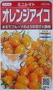 サカタ交配オレンジアイコサカタのタネのミ