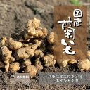 【送料無料/あす楽】土付き国産生菊芋 2kg【5のつく日ポイント最大11倍/プレゼント】