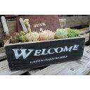 多肉植物寄せ植えに最適!JUNKなウッドプランター(L)【WEL-BK】当店オリジナル