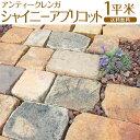 アンティークレンガ / シャイニーアプリコット / 1平