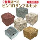 ピンコロ / サンプル / 2個セット ピンコロ石