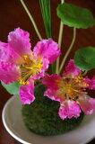 苔玉/ピンクの花と皿付き【造花:光触媒付き+銀抗菌コーティング】【がんばろう!宮城】