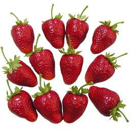【食品サンプル】イチゴ・S・全長3.5cm・24個セット(1袋12個×2袋)(ストロベリー/いちご/苺)(フェイクフード/食品模型/オブジェ/ディスプレイ/アレンジ)