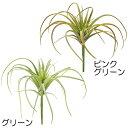 人工観葉植物 エアープランツ 全長11cm 5本セット ティランジア チランジア 造花 花材 リーフ 葉材 フェイクグリーン インテリアグリーン アレンジ