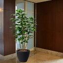【人工植物】ボダイジュ全高1.5m(菩提樹)(フェイクグリーン/インドアグリーン/造花/人工樹木/人工観葉植物)