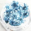 【ドライフラワー】プチサイズ15輪 単色 スターフラワー 《クール》 [小花,プリザーブドフラワー,花材,flower,ブルー,青,極小]