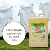 あらって消臭 1L(洗濯洗剤/エコ洗剤/消臭/部屋干し/加齢臭/介護/4955506560014)