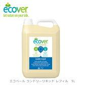 エコベール ランドリーリキッド リフィル 5L(ECOVER/洗濯用洗剤/洗濯洗剤/衣類用洗剤/エコ洗剤/業務用/5412533002096)