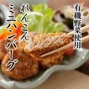 ハンバーグ ベジタリアン ダイエット