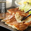 【クール便送料別途】人気商品!国産野菜を使ったヘルシー菜食餃...