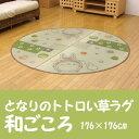 Igusawagokoro176-00