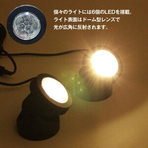 �����顼LED�饤�ȥ����顼���ż����ݥåȥ饤�Ȳ��ȿ�����