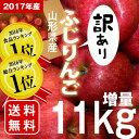 ≪2016年総合1位入賞!≫増量11kg 山形産 訳あり ふ...
