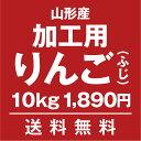 加工用・生食不可 山形りんご(ふじ)10kg【送料無料】
