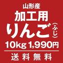 加工用・生食不可 山形りんご(ふじ)10kg【送料無料】...