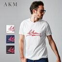 AKM エイケイエム エーケーエム AKM LIP LOGO CREW メンズ Tシャツ クルーネック 半袖 リップロゴ S-XL 小澤智弘 正規品 T195-CNR010