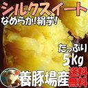シルクスイート【2kg増量】5kg→7kg☆さつまいも!甘くなめらかな食感(絹芋)送料無料!甘みが強いサツマイモ(さつま芋)☆養豚場が良質な堆肥をふんだに使用し...