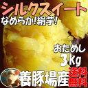 シルクスイート【2kg増量】3kg→5kg☆さつまいも!豚が育てたサツマイモ 甘くなめらかな食感なさつま芋千葉県香取市産