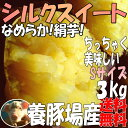 シルクスイート【2kg増量】3kg→5kgちっちゃいSサイズ!養豚のさつまいも!甘くなめらかな食感(絹芋)送料無料!サツマイモ(さつま芋)☆養豚場が良質な堆肥をふんだに使用し栽培☆千葉県産5キロ(土付)焼き芋(焼いも)やき芋にオススメ!
