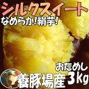 3箱まで送料同一!シルクスイート【2kg増量】3kg→5kg☆さつまいも!豚が育てたサツマイモ
