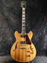 Ibanez Artcore Expressionist A...