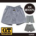 GUNZE(グンゼ)/G.T.HAWKINS(GTホーキンス)/ニットトランクス(前あき)(紳士)/HK1192