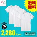 【送料無料】GUNZE(グンゼ)/YG/ネット限定お得セット YG D&D VネックTシャツ