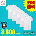 GUNZE(グンゼ)/YG/ネット限定お得セット YG D&D VネックTシャツ5枚セット(V首)(紳士)/SETM089