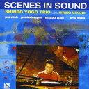 爵士蓝调 - 進藤陽悟TRIO with 宮野弘紀 / Scenes in Sound [CD]