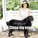 鈴木輪 / I'LL CLOSE MY EYES(瞳をとじて) [CD]