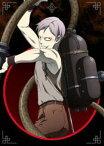 十二大戦 ディレクターズカット版 DVD Vol.4 [DVD]