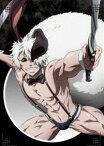 十二大戦 ディレクターズカット版 DVD Vol.5 [DVD]