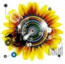CD, DVD, 樂器 - FENCE OF DEFENSE / 円游律 [CD]