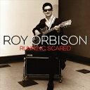 [CD]ROY ORBISON ロイ・オービソン/RUNNING SCARED【輸入盤】