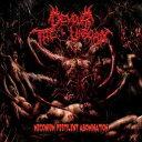 Other - [CD] ディヴァウア・ジ・アンボーン/Meconium Pestilent Abomination