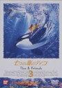 [DVD] 七つの海のティコ 3